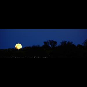 Burren Moon
