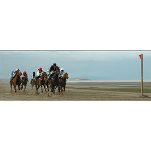 Last Race at Laytown