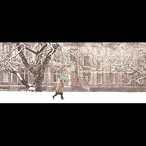 Trinity Under Snow