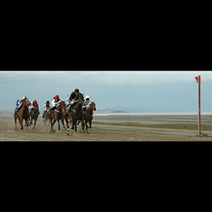 Last Race at Laytown